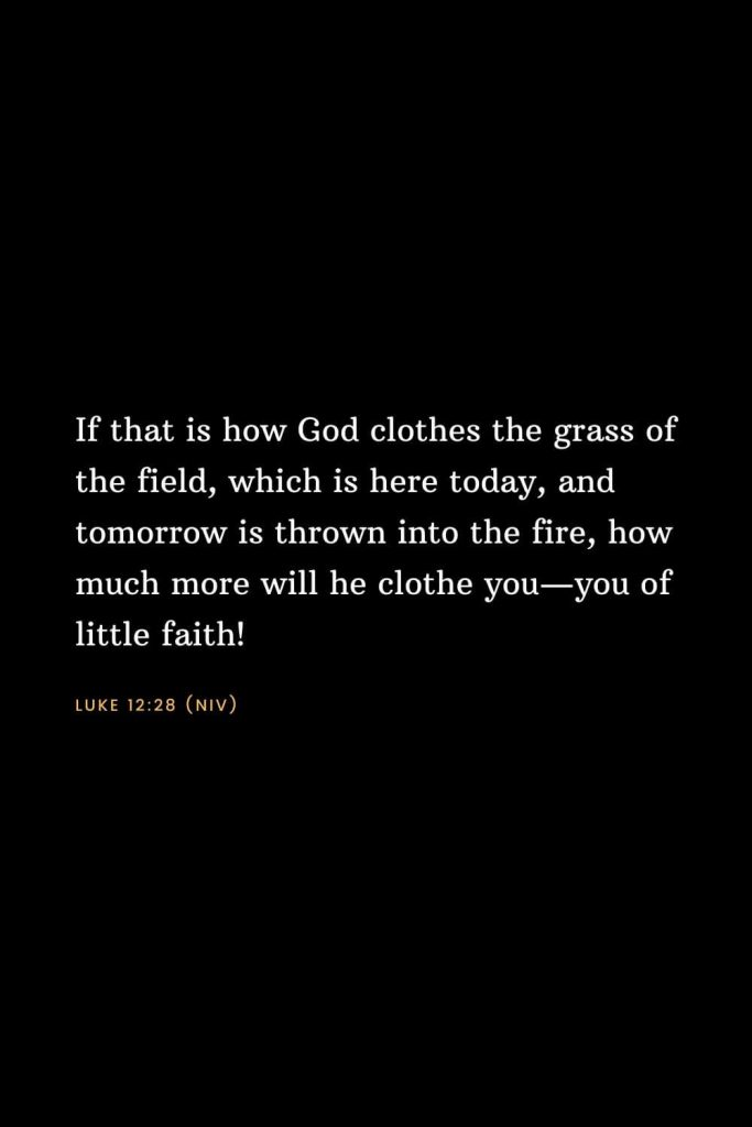 Bible Verses about Faith (9): If that is how God clothes the grass of the field, which is here today, and tomorrow is thrown into the fire, how much more will he clothe you—you of little faith! Luke 12:28 (NIV)