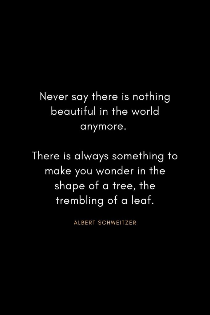 Christian Words of Inspiration (25): Never say there is nothing beautiful in the world anymore. There is always something to make you wonder in the shape of a tree, the trembling of a leaf. - Albert Schweitzer