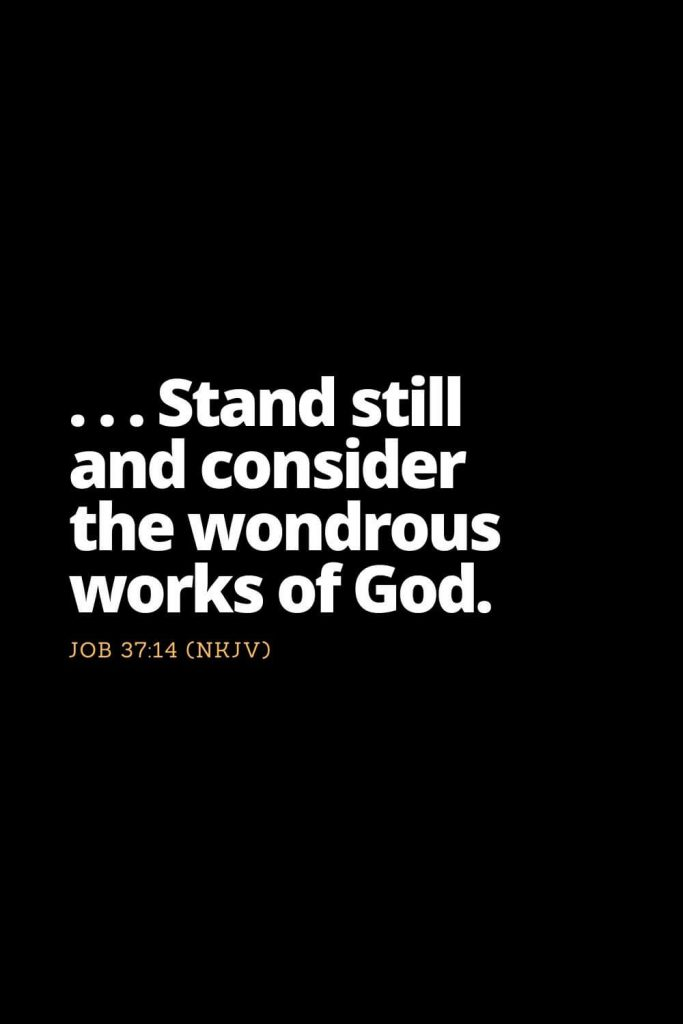 Motivational Bible Verses (27): . . . Stand still and consider the wondrous works of God. Job 37:14 (NKJV)