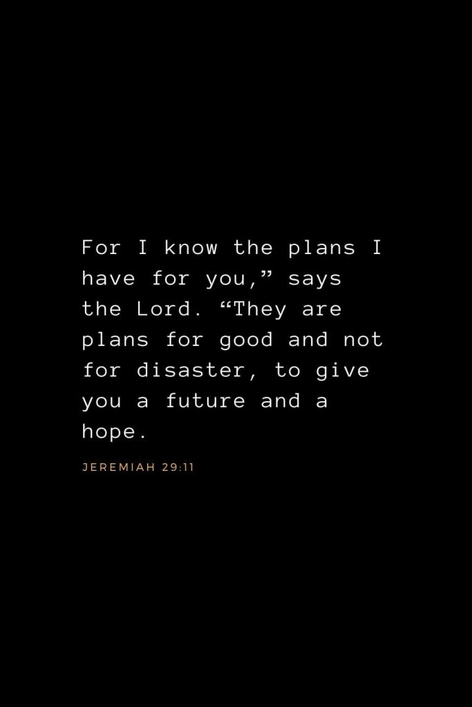 "Wisdom Bible Verses (18): For I know the plans I have for you,"" says the Lord. ""They are plans for good and not for disaster, to give you a future and a hope. Jeremiah 29:11"