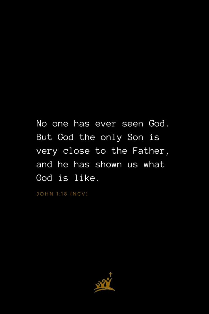 Bible Verses about God (21): No one has ever seen God. But God the only Son is very close to the Father, and he has shown us what God is like. John 1:18 (NCV)