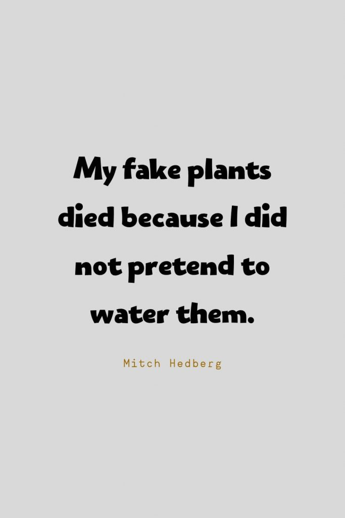 Funny Quotes (10): My fake plants died because I did not pretend to water them. -Mitch Hedberg