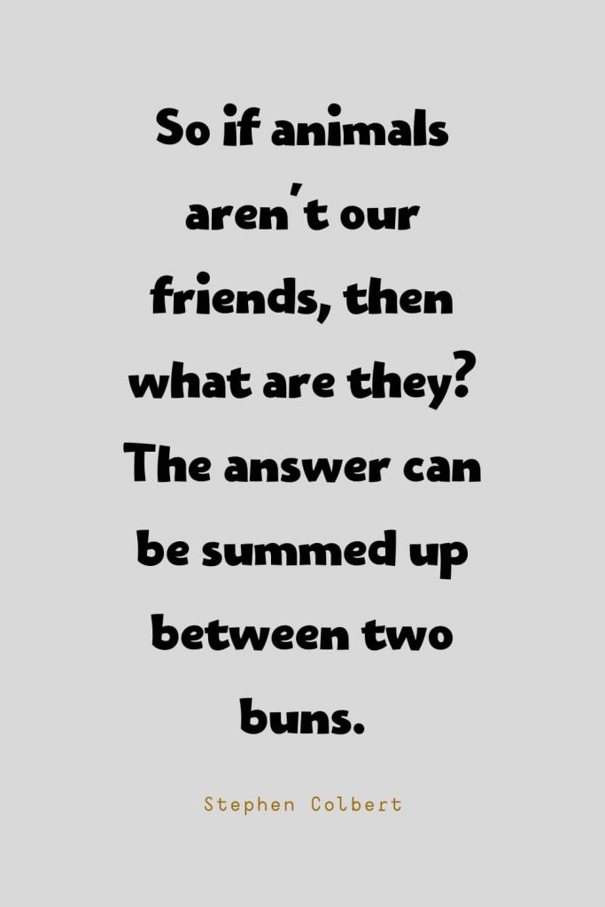Funny Quotes (81): So if animals aren't our friends, then what are they? The answer can be summed up between two buns. -Stephen Colbert