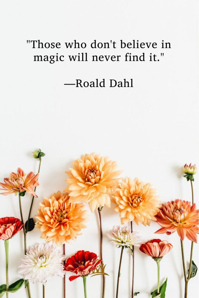 """""""Those who don't believe in magic will never find it."""" —Roald Dahl"""