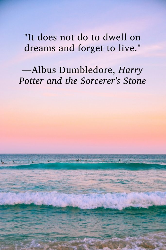"""""""It does not do to dwell on dreams and forget to live."""" —Albus Dumbledore, Harry Potter and the Sorcerer's Stone"""