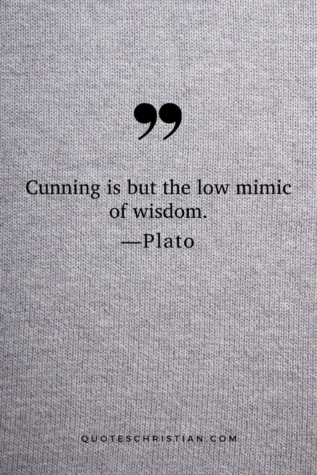 Quotes By Plato: Cunning is but the low mimic of wisdom.