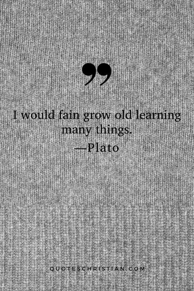 Quotes By Plato: I would fain grow old learning many things.