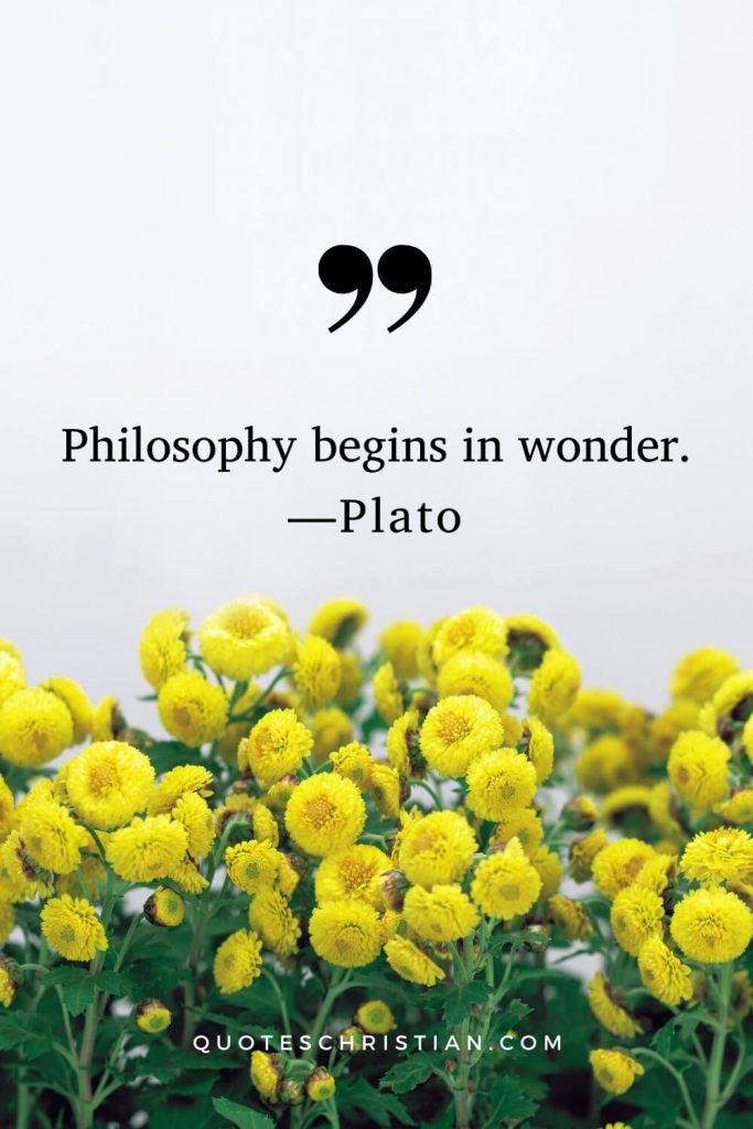 Quotes By Plato: Philosophy begins in wonder.