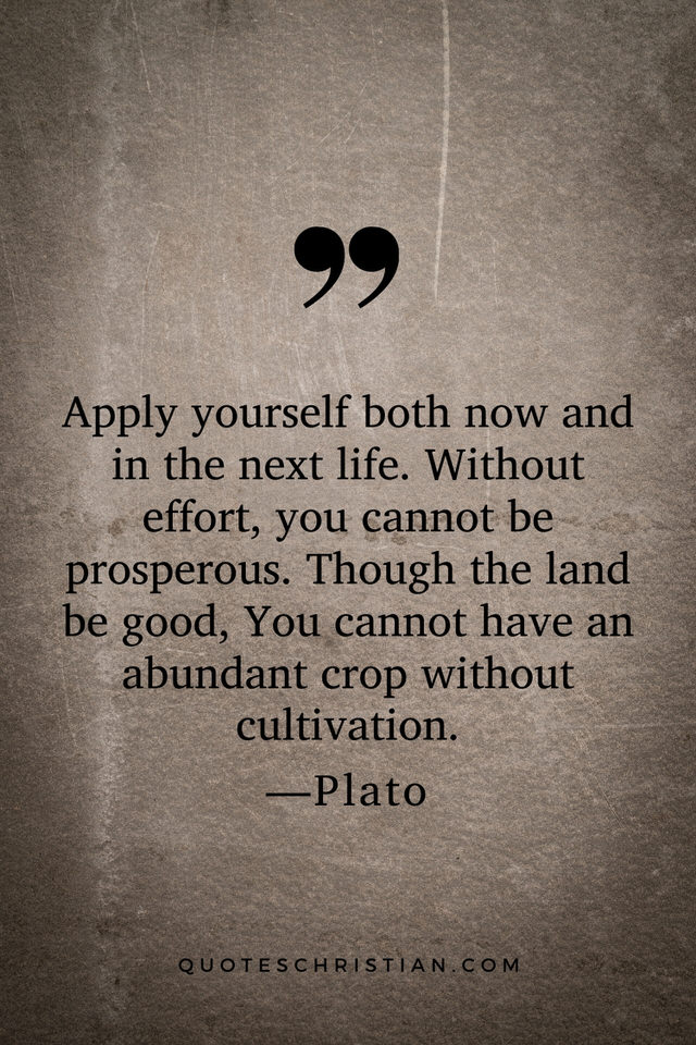 Quotes By Plato: Apply yourself both now and in the next life. Without effort, you cannot be prosperous. Though the land be good, You cannot have an abundant crop without cultivation.