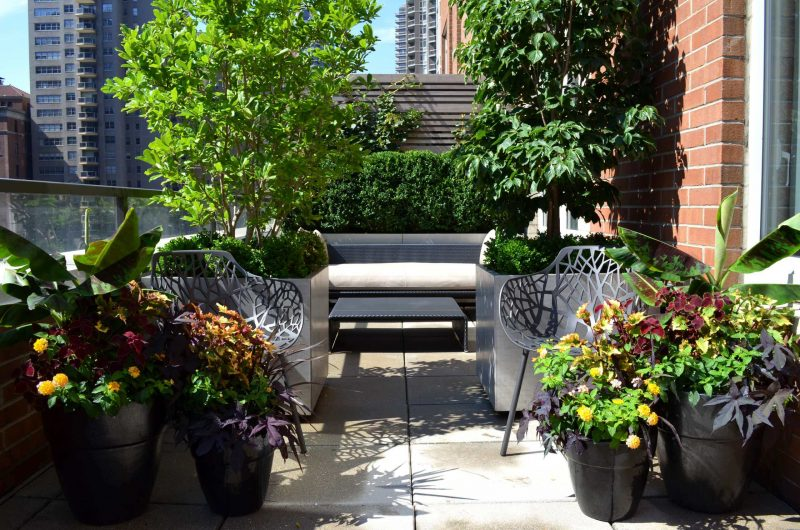 A classic upper east side terrace garden features horizontal slat ipe fencing, custom metal clad planter boxes and formal plantings. Ceramic feature planters