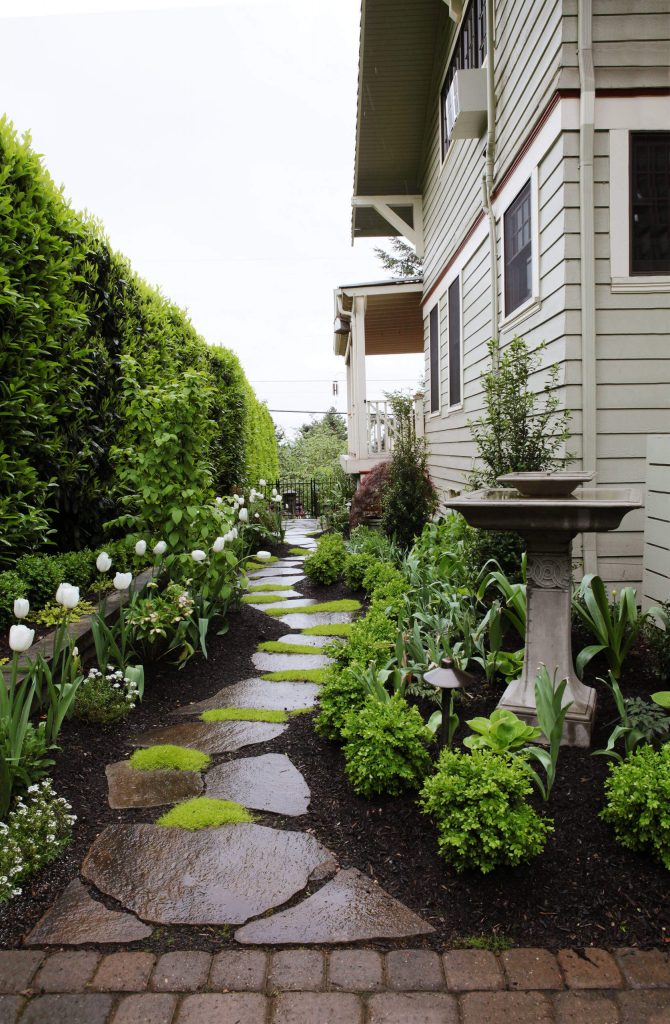 Ideas to Perk Up Side Yard (20)