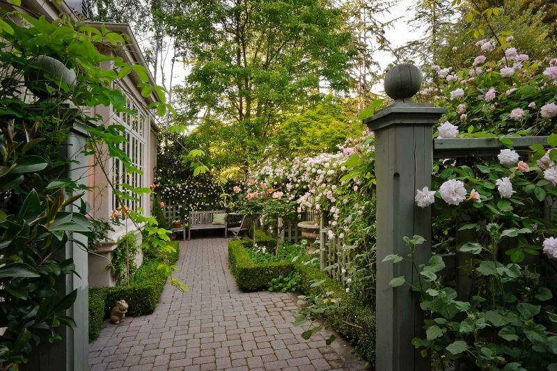 Ideas to Perk Up Side Yard (3)