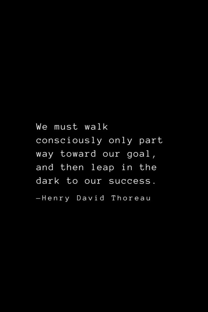 We must walk consciously only part way toward our goal, and then leap in the dark to our success. — Henry David Thoreau