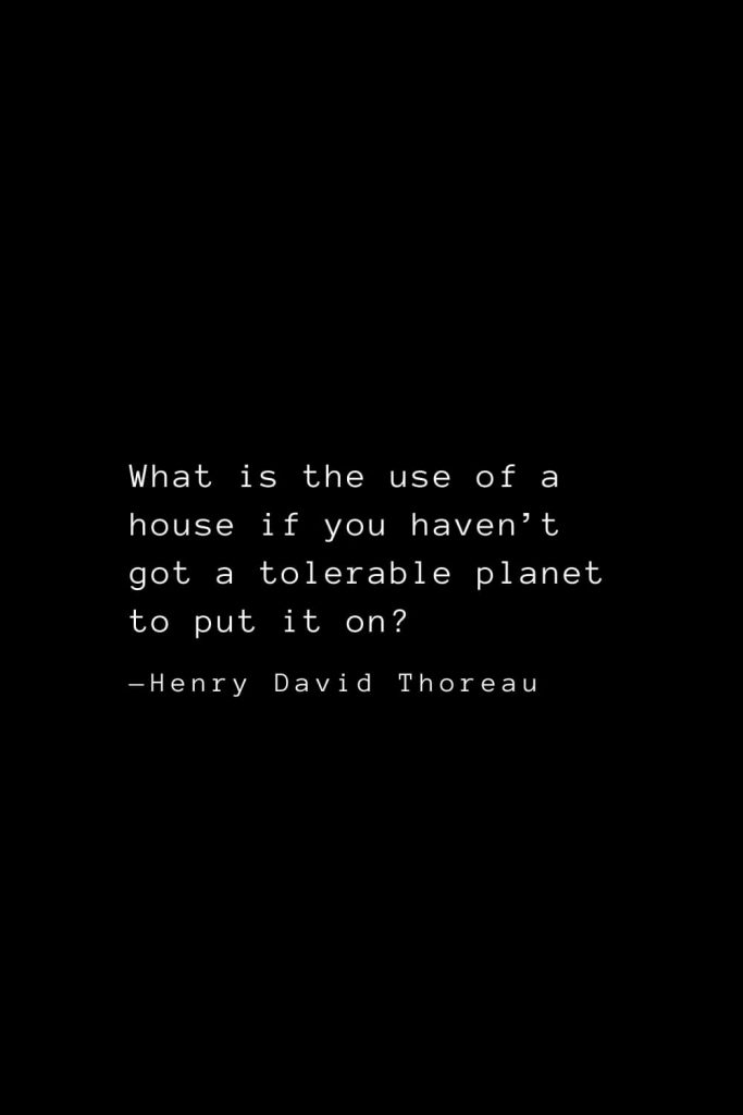 What is the use of a house if you haven't got a tolerable planet to put it on? — Henry David Thoreau