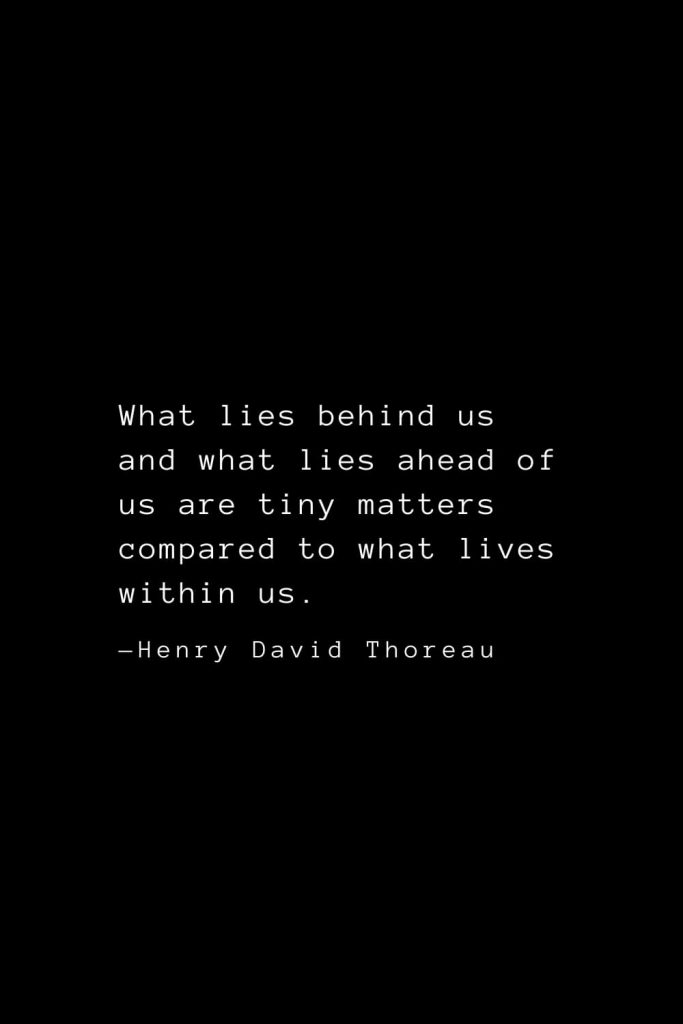 What lies behind us and what lies ahead of us are tiny matters compared to what lives within us. — Henry David Thoreau