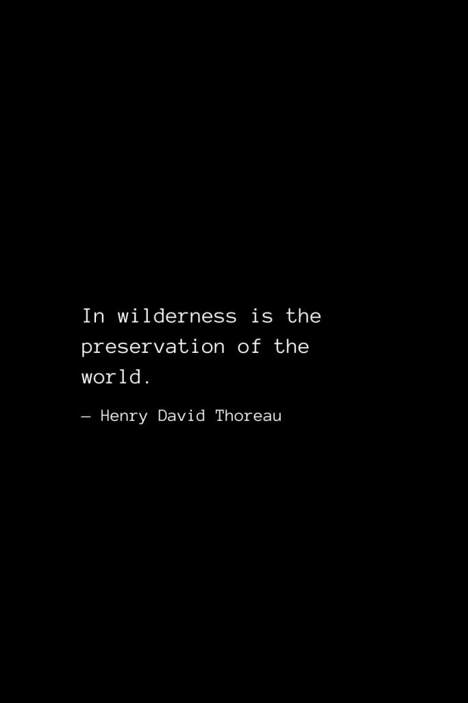 In wilderness is the preservation of the world. — Henry David Thoreau