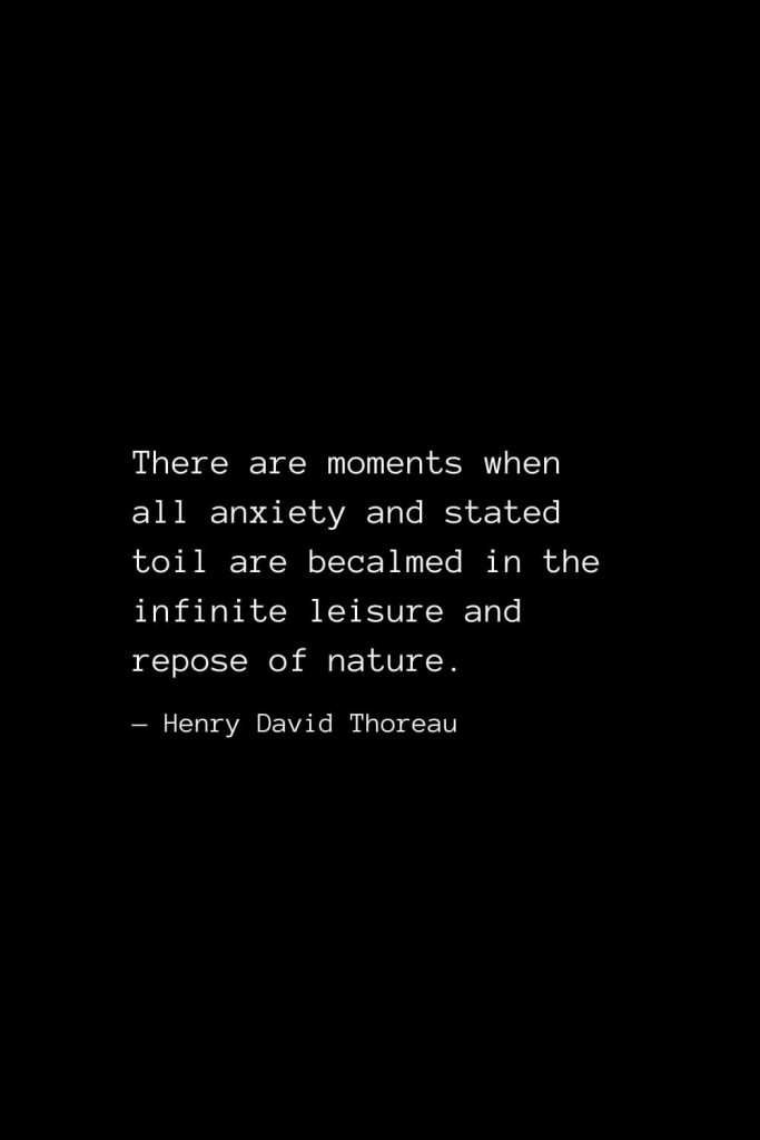 There are moments when all anxiety and stated toil are becalmed in the infinite leisure and repose of nature. — Henry David Thoreau