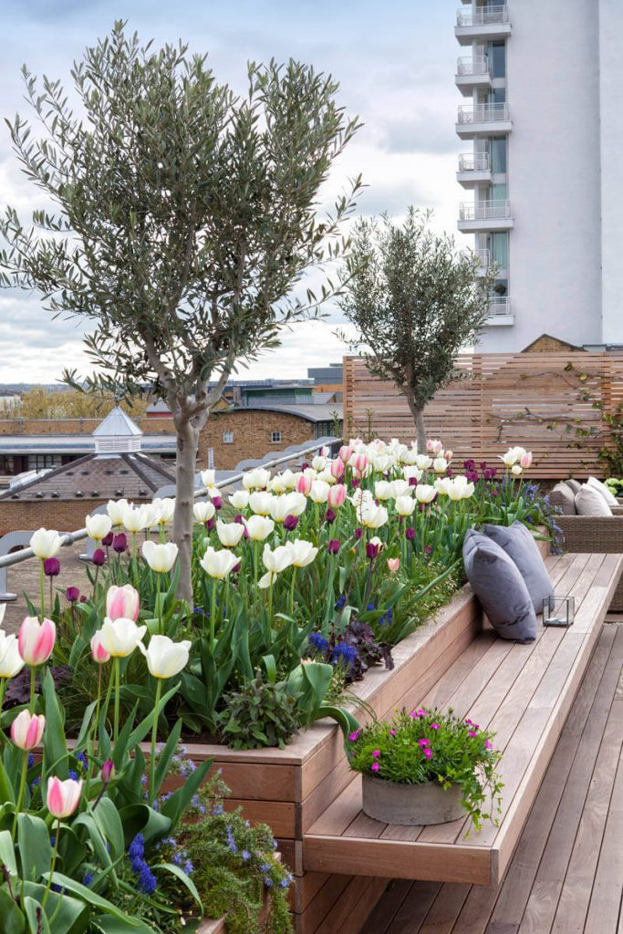 Roof Terrace at New Concordia Wharf