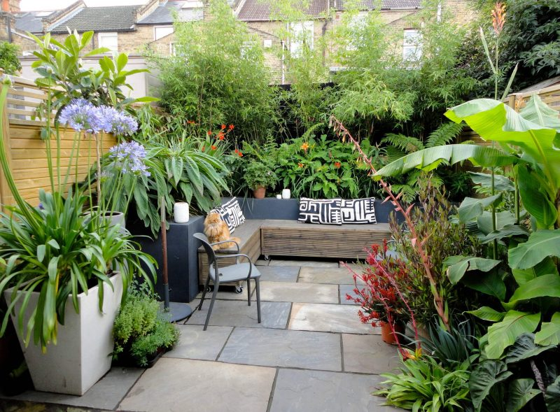 The finished garden, an abundance of plants compliment the design of this garden.