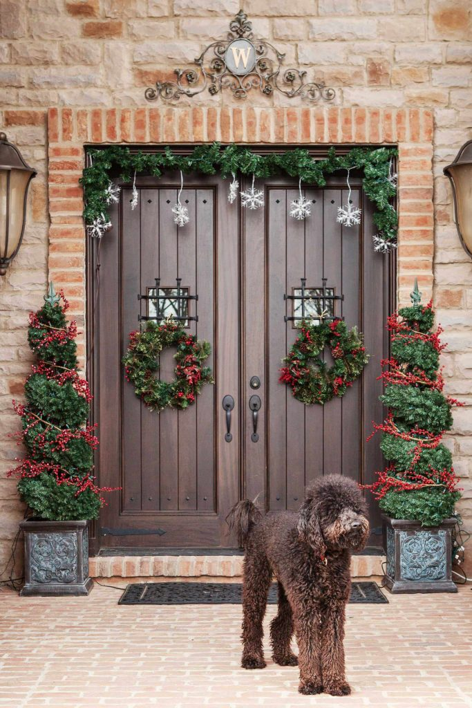 There's a lot to love about this entry, like the red berries wrapping the topiaries, but that beautiful pooch steals the show.